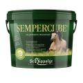 SemperCube 10kg
