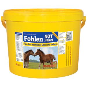 Fohlen-Not-Paket